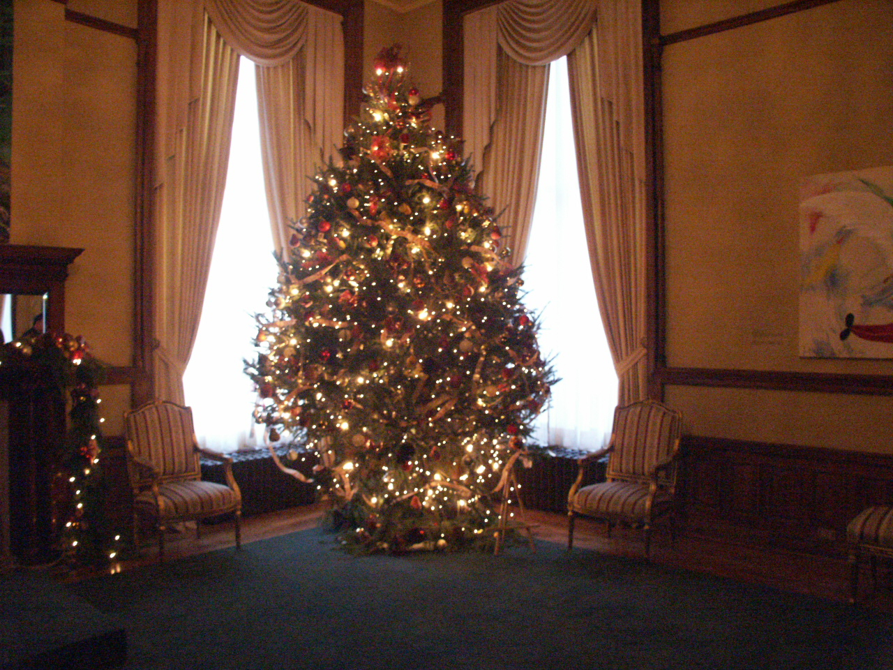 Real versus fake Christmas trees - Environmental Communication Options/Huff Strategy